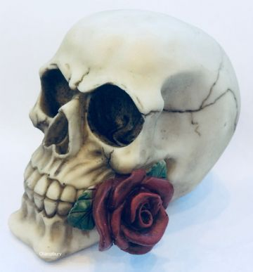 Gothic SINGLE RED ROSE Skull Head Skeleton Horror Halloween SK123